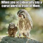 Funny Accidental Cursing In Front of Mom.jpg